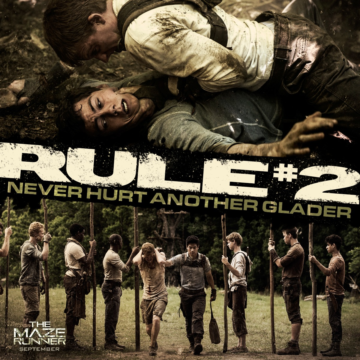 39 the maze runner 39 new trailer and contest bookstacked. Black Bedroom Furniture Sets. Home Design Ideas
